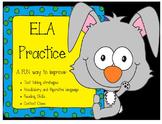 Spring ELA FSA practice