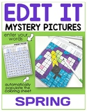 Editable Color By Code Sight Word Mystery Pictures - Spring