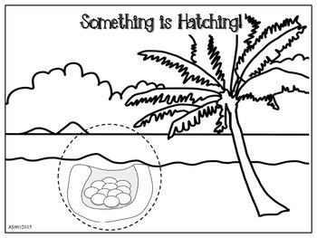 Hatching Animals 9 Original See Inside Lift a Flap Crafts