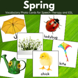 Spring Vocabulary Cards for ESL and Special Education