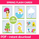 Spring Flash Cards; Kindergarten; Preschool; Homeschool; B