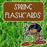 Spring Flashcards