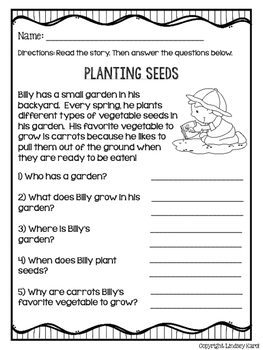 Spring Fling Mini Stories and WH Comprehension Questions