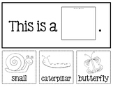 """Spring Flip Book Emergent Reader: """"This is a _____."""""""