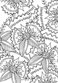 Spring Floral Coloring Page Printable