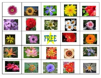 Spring Flower Bingo