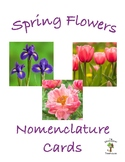 Spring Flowers 3 Part Nomenclature Cards with Real Pictures