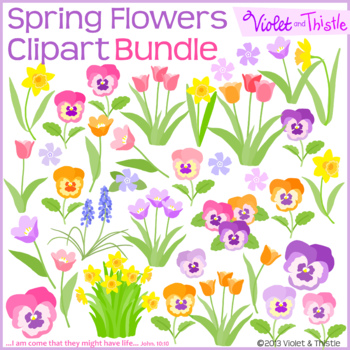 Spring Flowers BUNDLE Color Clipart Flower Tulip Daffodil Hyacinth Pans Clip Art