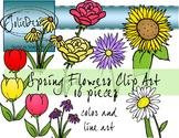 Spring Flowers Clip Art - Color and Line Art 16 pc set