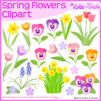 Spring Flowers Clipart Set 1 Pansy Daffodils Tulips Pansies Hyacinth Clip Art