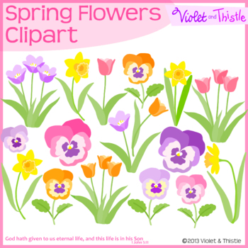 2 Dollar Deal Spring Flower Set 2 Pansy Daffodil Tulip Clipart Clip Art