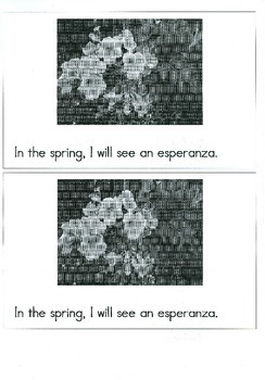 Spring Flowers/ Emergent Reader/Sight Words In, The, I, Will, See
