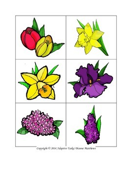 May Flowers Matching Activity