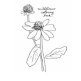 Wildflower Mini Hand Drawn Coloring Book
