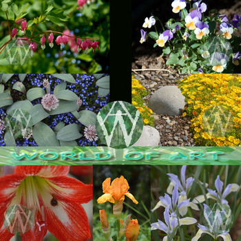 Spring Flowers: Poppy, Iris, Tulip, Hyacinth,  Lilac, Daffodils Pansy, & More
