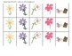FREEBIE No-Prep Spring Flowers Reinforcement Activity