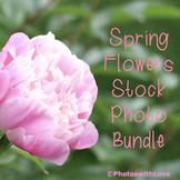 Spring Flowers Stock Photo Bundle