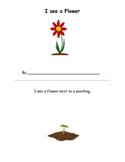 Spring Garden Spatial Concepts Activity Book