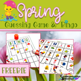 Spring Guessing Game and Bingo (Freebie)