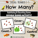 Spring How Many? Numbers 1-5 Subitizing & Counting Google Slides Splat Game