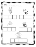 Spring Insect CVC worksheet