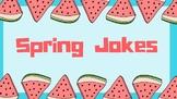 Spring Jokes - 12 cards for classroom fun!