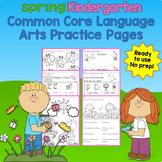 Spring Kindergarten Common Core Language Arts, Literacy Practice Pages