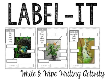 Spring: Label It (Write & Wipe Activity)