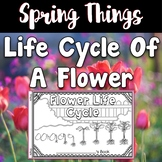 Spring ~ Life Cycle of a Flower Book