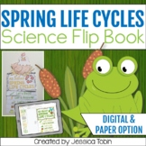 Spring Life Cycles Flip Book - Digital With Google Slides