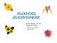 Spring Literacy/Activity Packet--Great for Special Educati