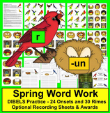 Spring Activities: Birds & Nests-Onset/Rimes Blending - DIBELS - Set 1