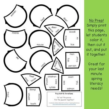 IRREGULAR PLURAL NOUNS Flower Puzzle | Spring Activities for Literacy or ELA