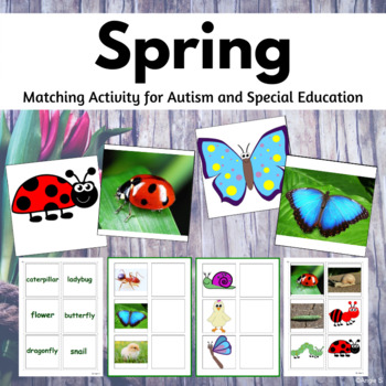Spring Matching Activities