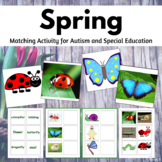 Spring Speech Therapy Activity for Special Education