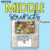 Spring Middle Sound Sort Freebie