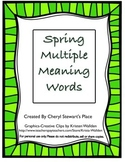 Spring Multiple Meaning Word Cards