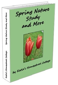 Spring Nature Study and More