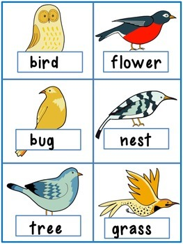 Spring Noun Verb Sort Adjectives Optional!