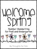 Spring Number Handwriting Packet, PreK and Kindergarten, N