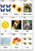 Spring Numbers and Memory Activity Plan