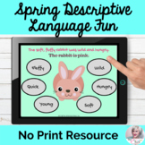 Spring Object Descriptive Fun Adjectives Language Lesson NO PRINT Teletherapy
