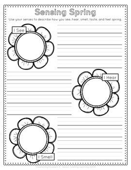 Spring Observation Journal