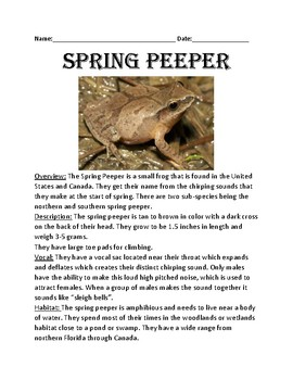 Spring Peeper - Chorus Frog - lesson article facts information questions review