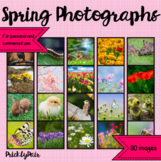 Spring Photo Backgrounds