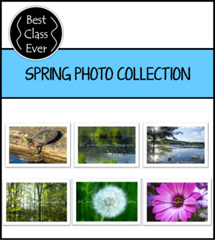 Spring Photo Collection *Growing Bundle*