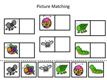 Spring Picture Match Freebie - Insects and Bugs