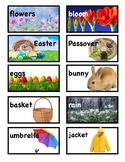 Spring Picture Vocabulary Word Wall Cards and Individual Word Wall tc