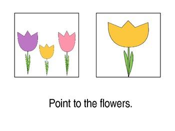Spring Plurals