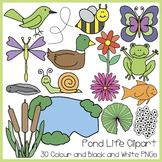 Spring Pond Life Clipart